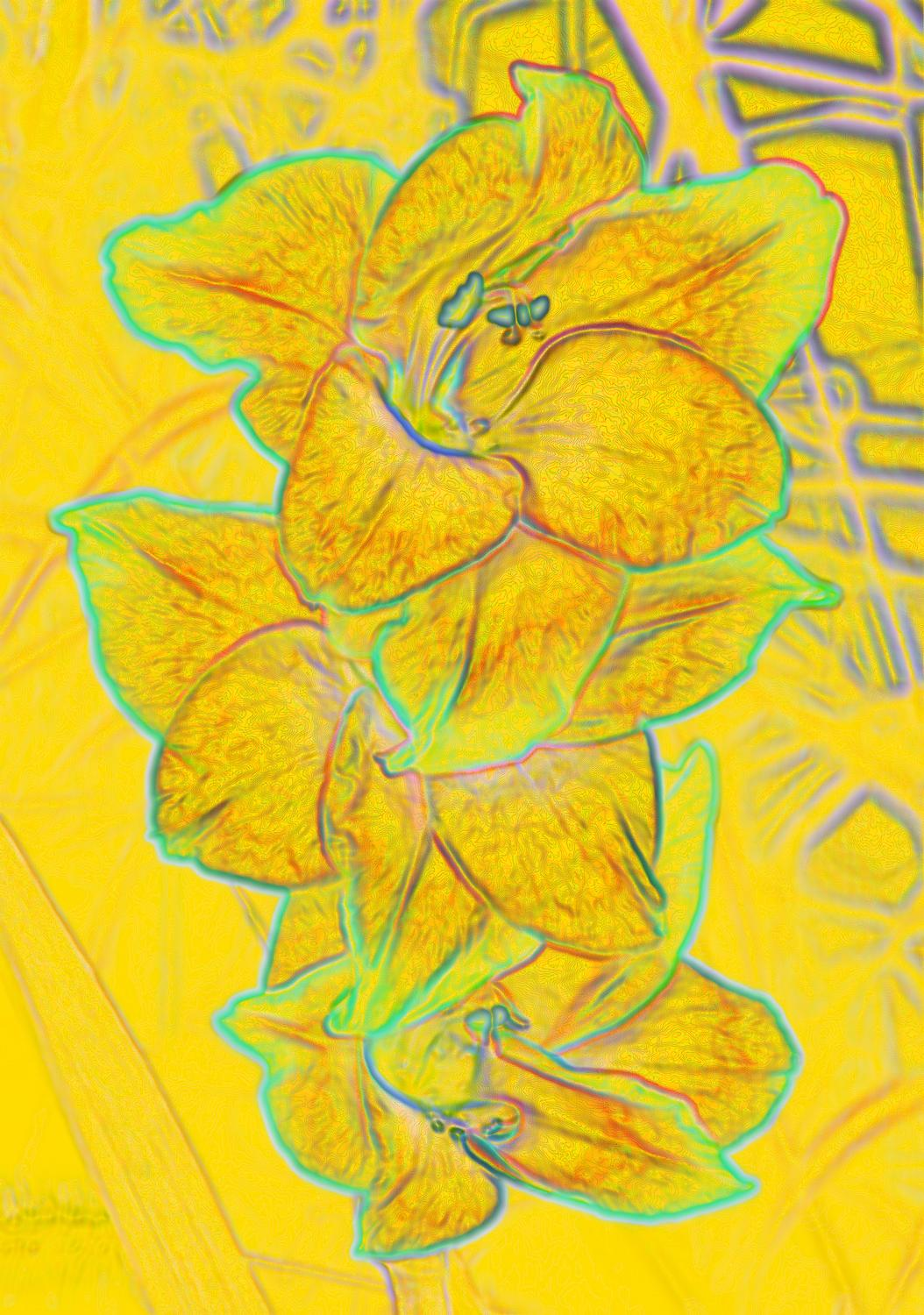 yellow iris outlined in light blue on light yellow background striking visual - Orange flowers on a yellow background - Techno-Impressionist Museum - Techno-Impressionism - art - beautiful - photo photography picture - by Tony Karp